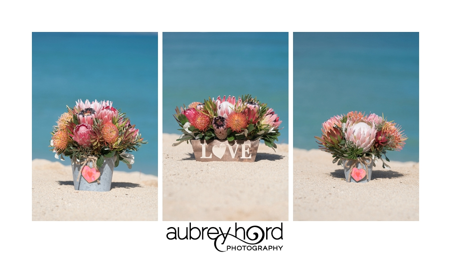 Maui Commercial Photographer Aubrey Hord Valentines Baskets for Proteas of Hawaii